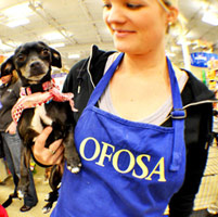 OFOSA Adoption Events at Petsmart