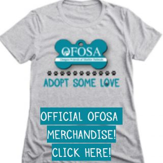 OFOSA Merchandise Widget
